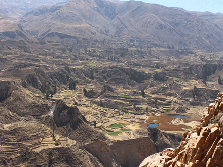 Colca Canyon tour 3 dagen